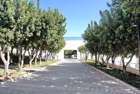 Yad Vashem Avenue of Righteous