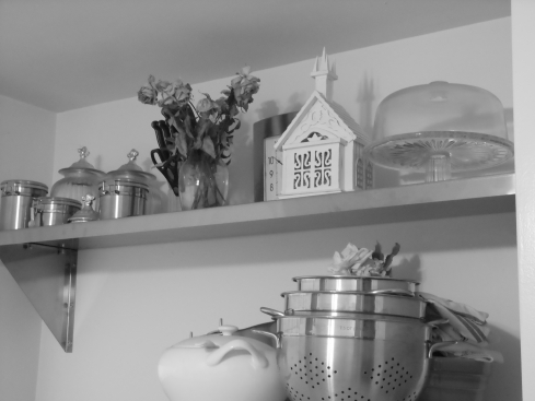 Black and White Photo of a Stainless Steel Wall Shelf